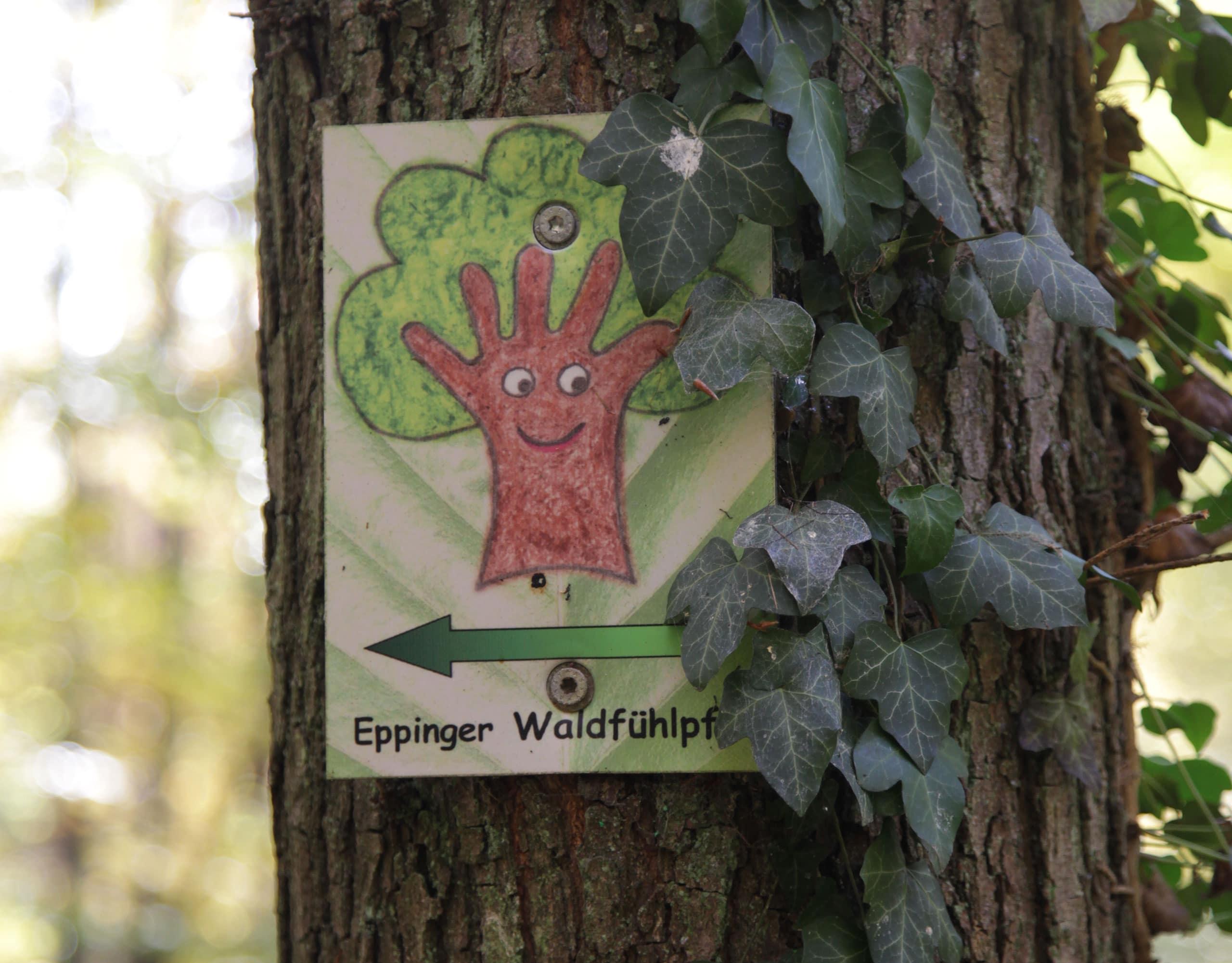 Eppinger Wald Fühl Pfad